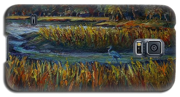Late Afternoon Galaxy S5 Case
