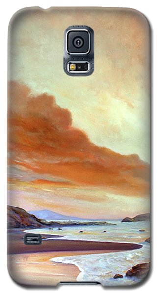 Late Afternoon On San Simeon Beach Galaxy S5 Case by Michael Rock