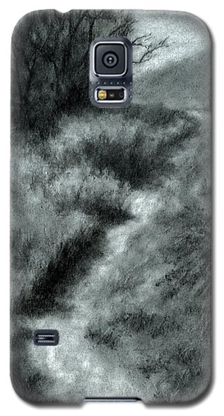 Late Afternoon Walk Galaxy S5 Case