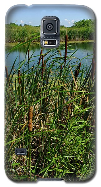 Galaxy S5 Case featuring the photograph Late Summer Cattails by Scott Kingery