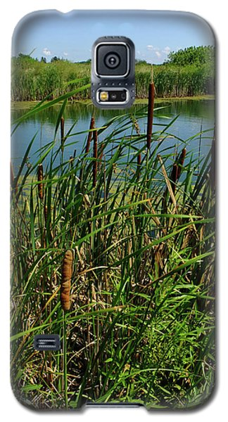 Late Summer Cattails Galaxy S5 Case