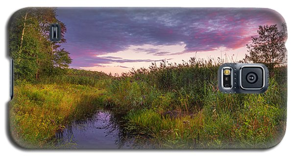Late Summer Color At Blue Marsh Galaxy S5 Case