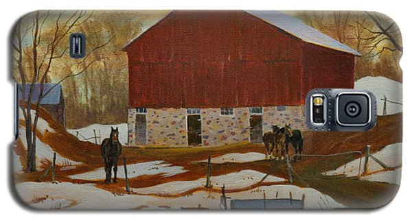 Late Winter At The Farm Galaxy S5 Case