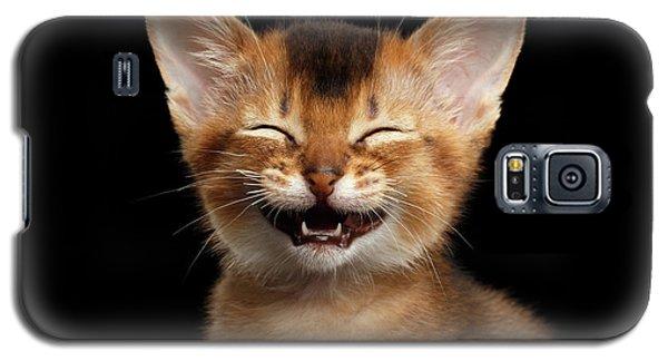 Laughing Kitten  Galaxy S5 Case