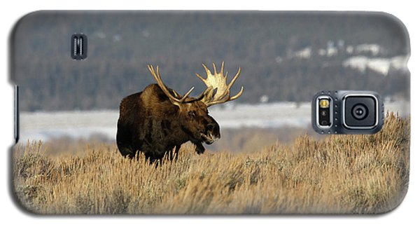 Laughing Moose Galaxy S5 Case