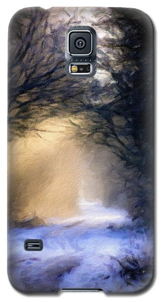Lavander Snow  Galaxy S5 Case