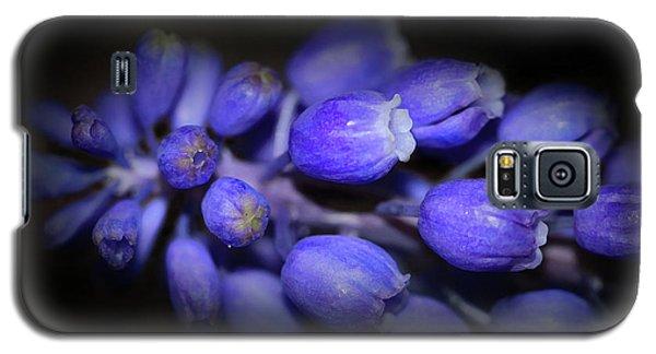 Lavendar Blue Galaxy S5 Case by Kim Henderson