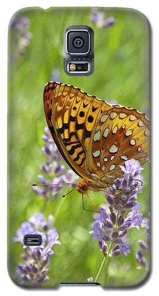 Lavender And Butterfly 2 Galaxy S5 Case