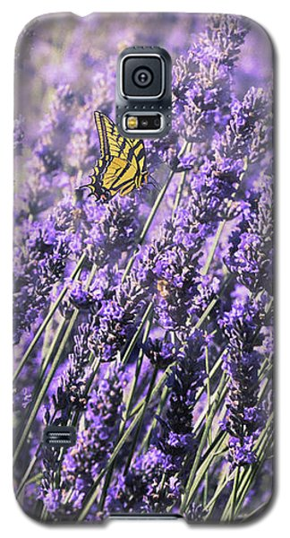Galaxy S5 Case featuring the photograph Lavender And Tiger Swallowtail In The Morning Light by Diane Schuster
