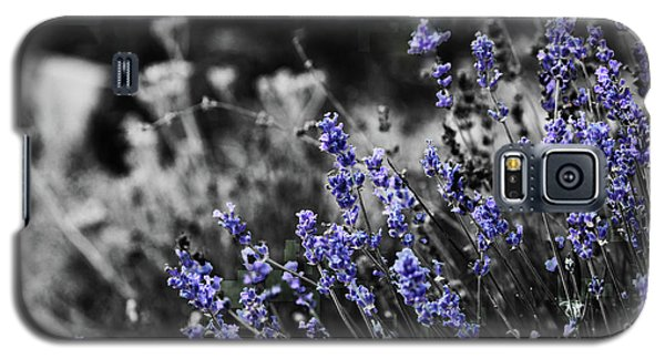 Lavender B And W Galaxy S5 Case