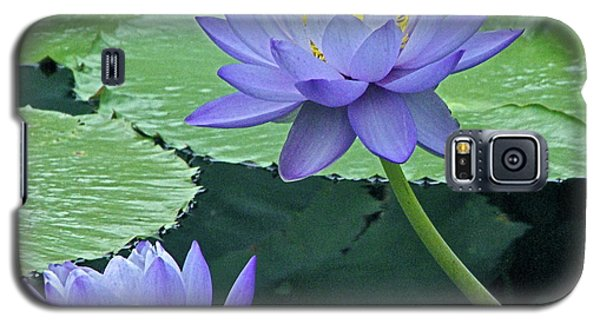 Galaxy S5 Case featuring the photograph Lavender Enchantment by Byron Varvarigos