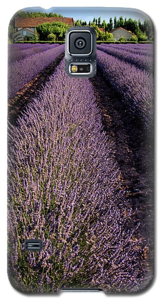 Lavender Field Provence France Galaxy S5 Case
