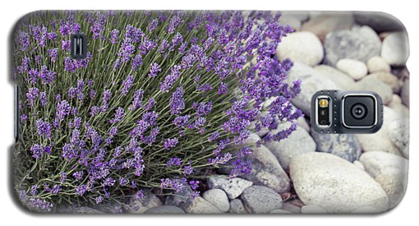 Lavender Flower In The Garden,park,backyard,meadow Blossom In Th Galaxy S5 Case