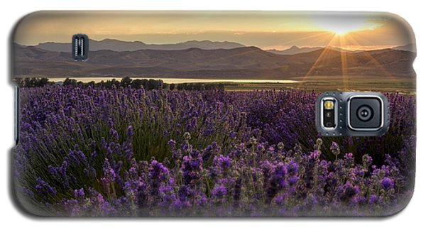 Lavender Glow Galaxy S5 Case by Chad Dutson