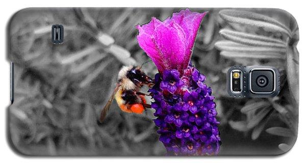 Lavender Harvest Galaxy S5 Case