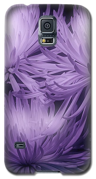 Lavender Mums Galaxy S5 Case