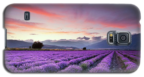 Landscapes Galaxy S5 Case - Lavender Season by Evgeni Dinev