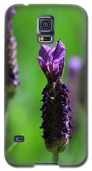 Lavender Spike Galaxy S5 Case