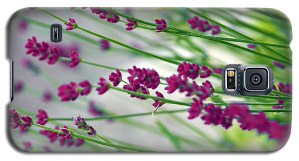 Galaxy S5 Case featuring the photograph Lavender by Susanne Van Hulst