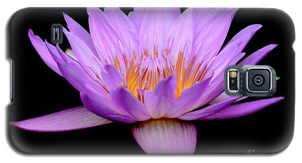 Lavender Tropical Day Lily Galaxy S5 Case