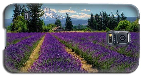 Lavender Valley Farm Galaxy S5 Case