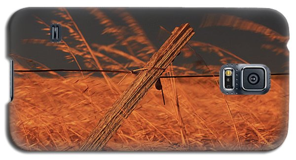Galaxy S5 Case featuring the photograph Lay Me Down In Golden Pastures by Marion Cullen