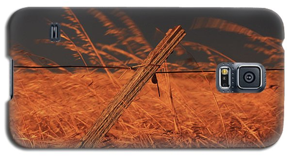 Lay Me Down In Golden Pastures Galaxy S5 Case
