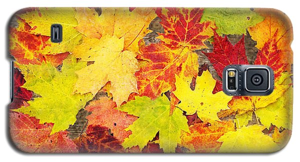 Layered In Leaves Galaxy S5 Case
