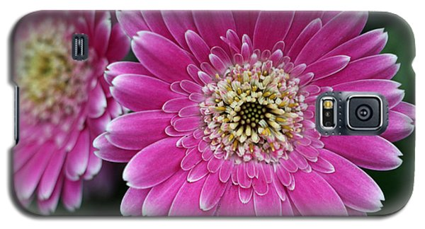 Layers Of Spring Galaxy S5 Case