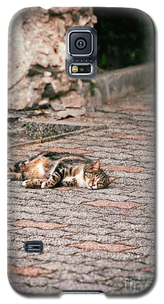 Galaxy S5 Case featuring the photograph Lazy Cat    by Silvia Ganora