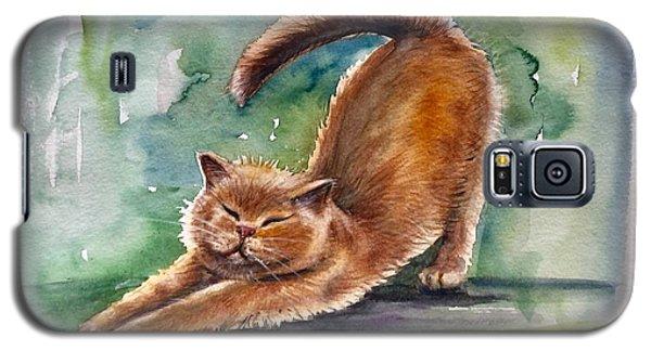 Lazy Day Galaxy S5 Case