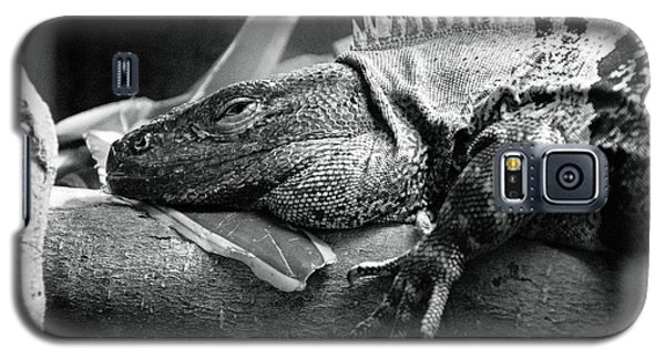 Lazy Lizard Galaxy S5 Case