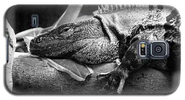 Lazy Lizard Galaxy S5 Case