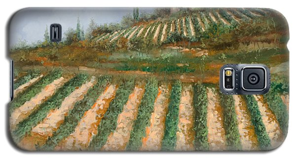 Wine Galaxy S5 Case - Le Case Nella Vigna by Guido Borelli
