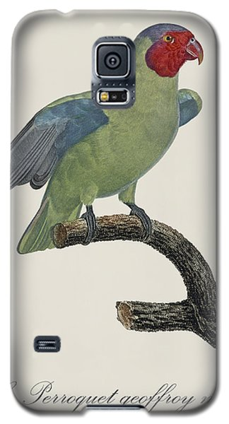 Le Perroquet Geoffroy Male / Red Cheeked Parrot - Restored 19th C. By Barraband Galaxy S5 Case by Jose Elias - Sofia Pereira