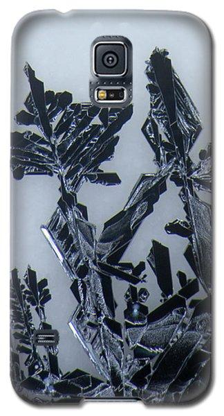 Lead Crystal Galaxy S5 Case