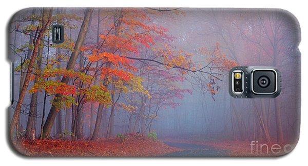 Journey Galaxy S5 Case by Rima Biswas