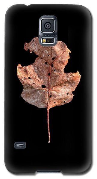 Leaf 24 Galaxy S5 Case