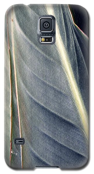 Leaf Abstract 14 Galaxy S5 Case by Sarah Loft