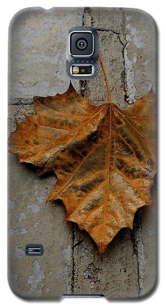 Leaf Cross Galaxy S5 Case