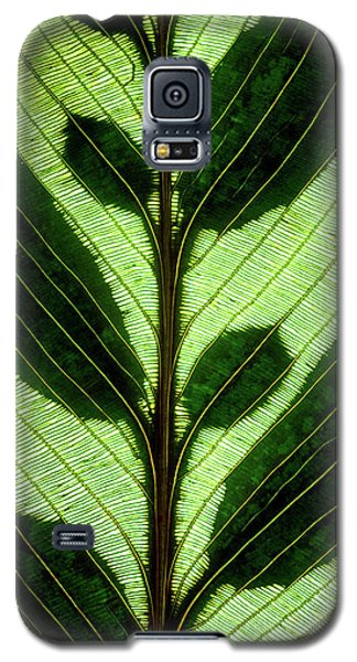 Leaf Detail Galaxy S5 Case