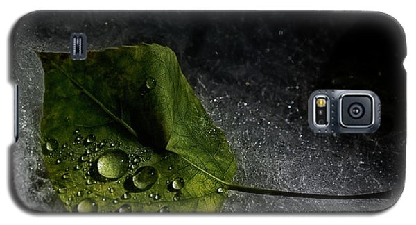 Leaf Droplets Galaxy S5 Case