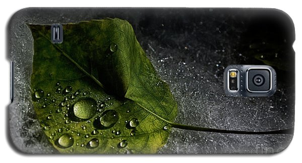 Leaf Droplets Galaxy S5 Case