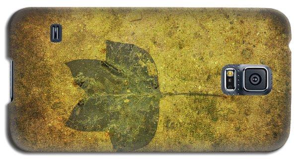 Galaxy S5 Case featuring the digital art Leaf In Mud One by Randy Steele