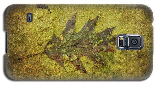 Galaxy S5 Case featuring the digital art Leaf In Mud Two by Randy Steele