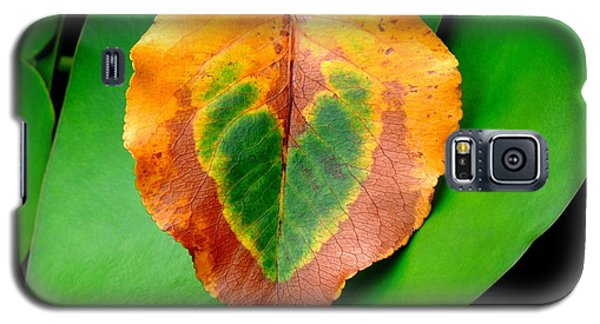 Leaf Leaf Heart Galaxy S5 Case
