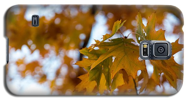 Galaxy S5 Case featuring the photograph Leaf by Lora Lee Chapman