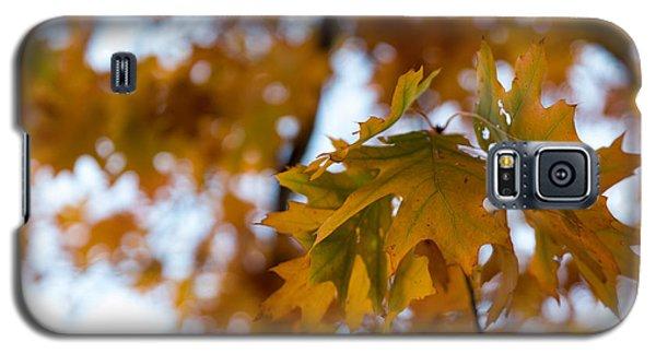 Leaf Galaxy S5 Case