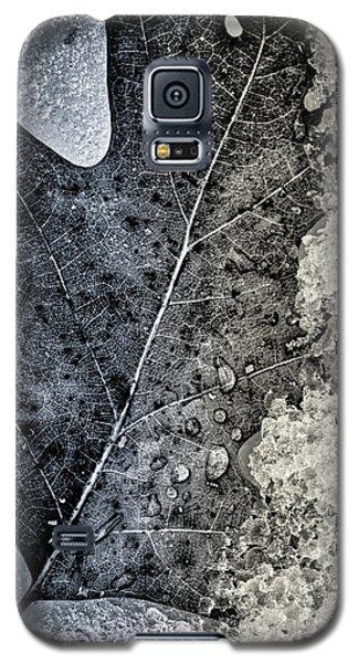 Leaf On Ice Galaxy S5 Case