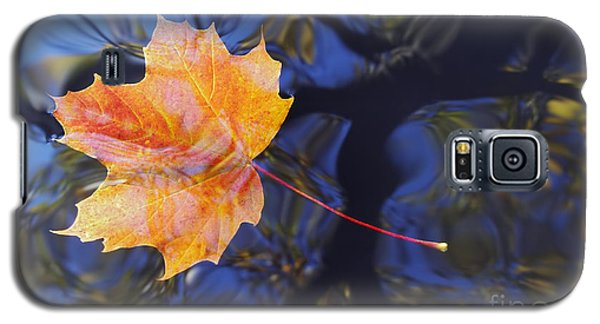 Leaf On The Water Galaxy S5 Case